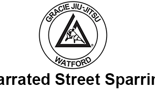Narrated Street Sparring